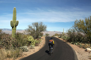 cyclist in Saguaro National Park, Arizona